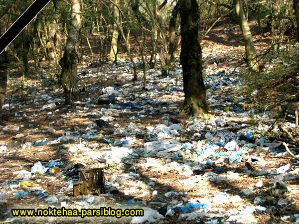 بی توجهی در پاکیزه نگه داشتن جنگل