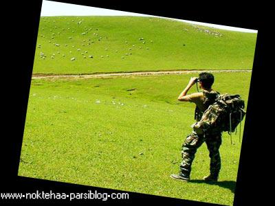 http://mobarez.persiangig.com/ax/tafrih/tabiat.jpg